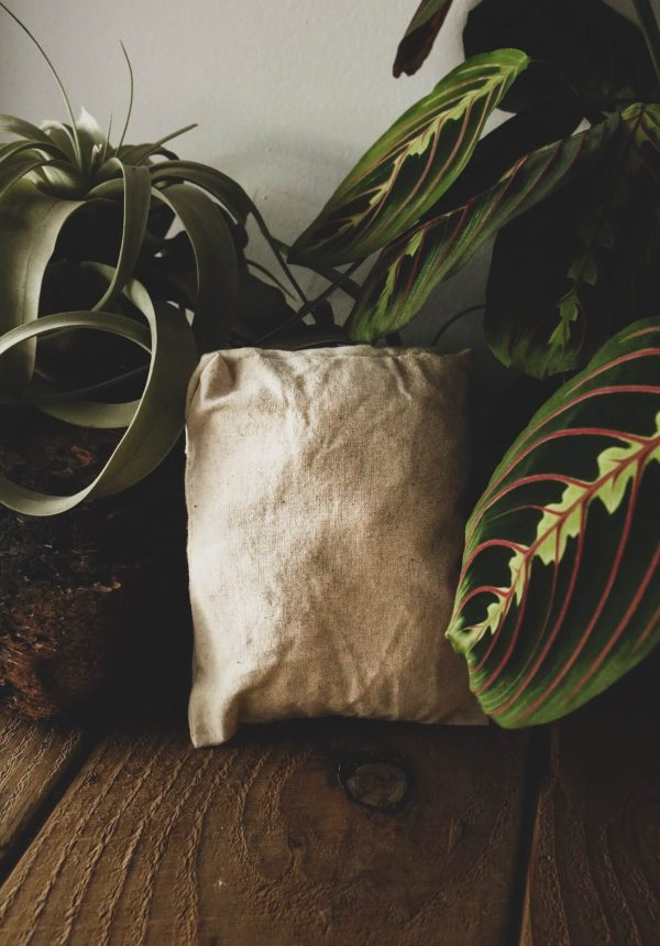 Tiny Folded Bag Example Greenery